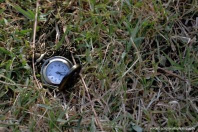I giorni sono forse uguali per un orologio, ma non per un uomo.