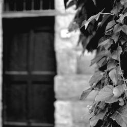 The door, b/w