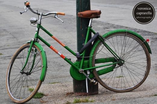 Green Torino, giugno 2015