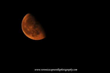 Luna rossa, 23 agosto 2016